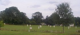 Cricket at Bugbrooke © Lorraine Turland
