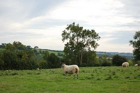 Byfield countryside © Linda Talmage