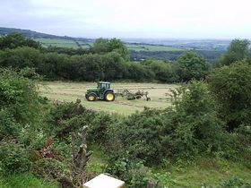The Tamar Valley,Callington Cornwall. © Daryle Arkwell-Gay