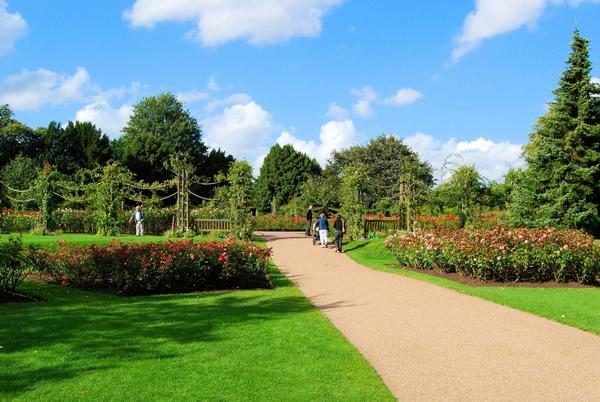 Regent's Park Rose Garden, London on sunny day