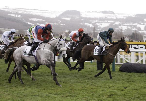 Jockeys jostle for position in the third race at Festival Trials Day at Cheltenham Racecourse