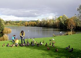 Birnie Loch, by Collesie © David Dunn