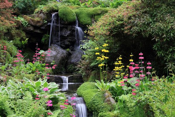 Waterfall and flowers in Bodnant Gardens near Colwyn Bay