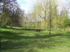 Picnic site by the brook © Bill Gibson