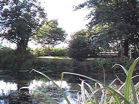 The Village Pond © Jon Walker