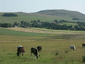 Elsrickle, a settlement of 40 properties astride the A721.  © Barry Rosindale