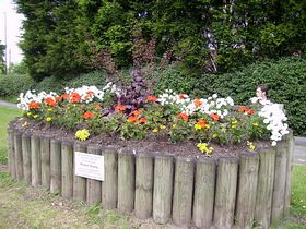 Flower planter on Balshaw Lane, Euxton © Debra Platt