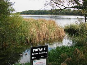 Filby Broad © Peggy Cannell