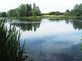 Ford Green Nature Reserve lake © Norma Williamson
