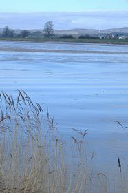 View across the Severn from Upper framilode © Betty Haynes
