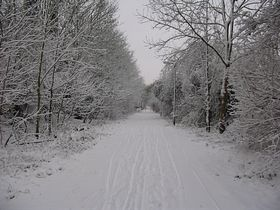 Winter wonderland at Great Linford © Eileen Goodall