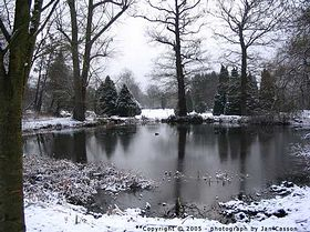 Bushy Park in the snow by Jan Casson © Helen Hurley & Jan Casson