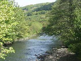 River near Llanbradach © Freebird Productions
