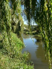 River Witham © Chaelotte Gardie