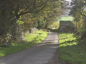 Country lane © Andrew Potter