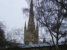 Norwich Cathedral © Trever Saunders