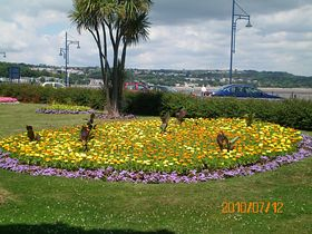 Flower beds at Oystermouth © Philip Cookson