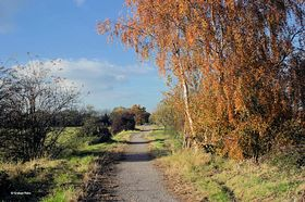 Part of the Shillingstone section of The North Dorset Trailway © Graham Rains