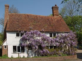 Wisteria Cottage in spring © Laura Hawken