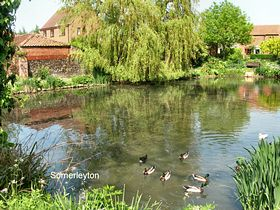 The pond in the village © Peggy Cannell