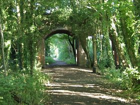 The bridleway following the old railway line as it passes below Bow Wow © Richard Lutwyche
