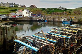 Lobster pots at St. Abbs Harbour © Dennis M Bradley