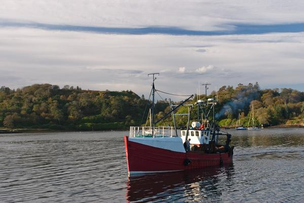 Fishing boat returns to Stornoway Harbour, Isle of Lewis
