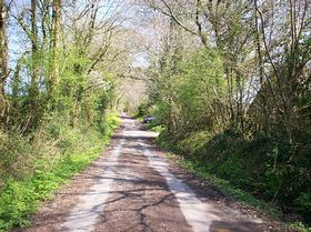 Lane to Whitland Abbey © ruth